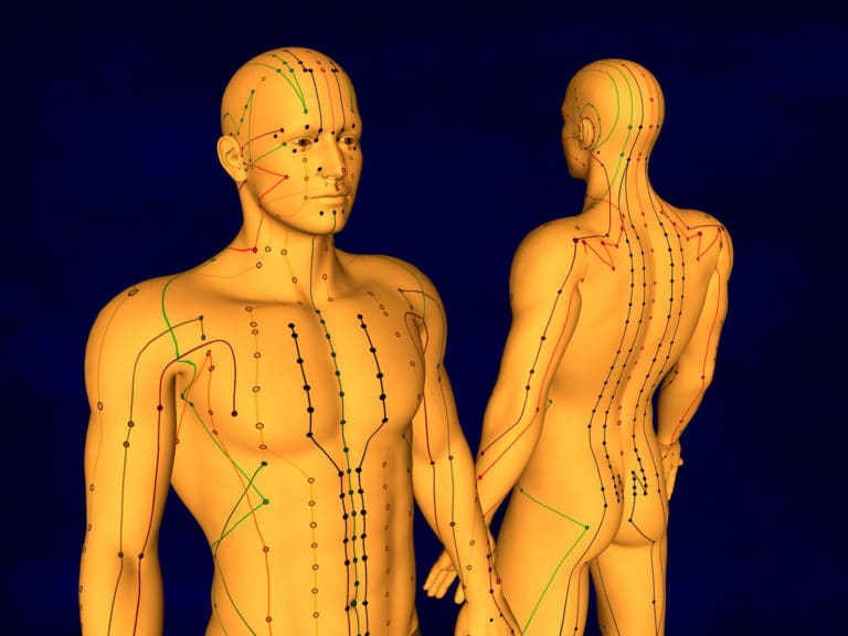 diagram of acupuncture at kent chiro in ottawa